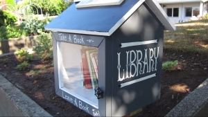 example of little street library,USA